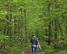 Løvskov.