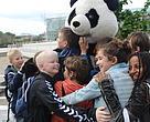 WWF's panda på valgpatrulje i Aarhus