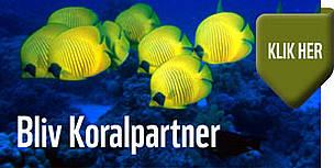 partner,støt,banner / ©: WWF