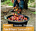 Palm Oil Buyer's Scorecard - forside