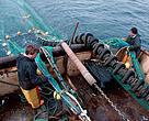Shooting away the trawl on a North Sea trawler.