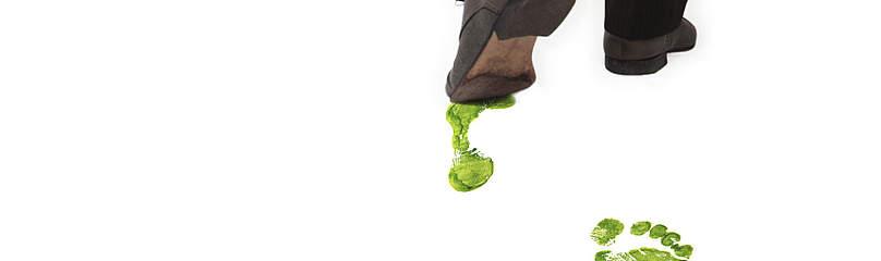 Erhvervslivet Virksomheder CSR Grønt fodspor / ©: Istockphoto.com / WWF-Canada