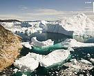 WWF Verdensnaturfonden: Svaret på de økonomiske udfordringer er ikke yderligere olieefterforskning i de arktiske farvande.