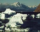 Grønland Arktis Is Klimaforandringer