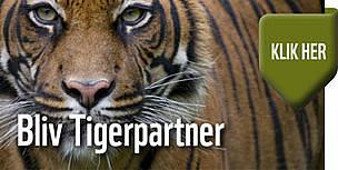 tiger,partner,banner,støt / ©: WWF