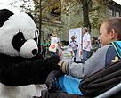 Verdens bedste nyheder, panda