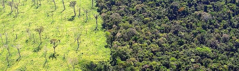 / ©: WWF Brazil / Claudio Maretti